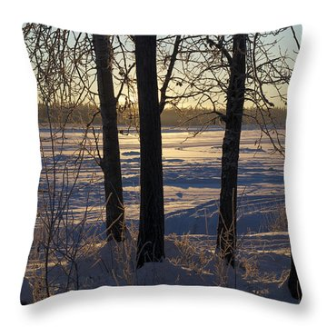 Chena River Trees Throw Pillow