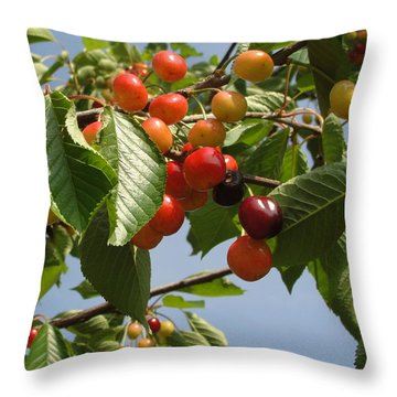 Throw Pillow featuring the photograph There's Always 'that One' by Natalie Ortiz