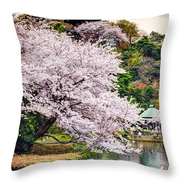 Throw Pillow featuring the photograph Cherry Blossom 2014 by John Swartz