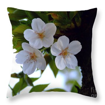 Cherry Blossom Throw Pillow by Andrea Anderegg