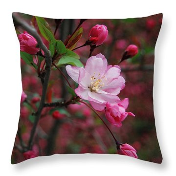 Throw Pillow featuring the photograph Cherry Blossom by Eva Kaufman