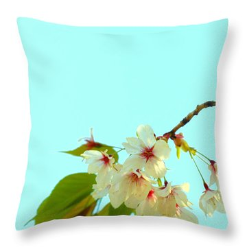 Throw Pillow featuring the photograph Cherry Blossom Flowers by Rachel Mirror