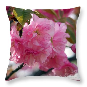 Throw Pillow featuring the photograph Cherry Blossom by Gena Weiser