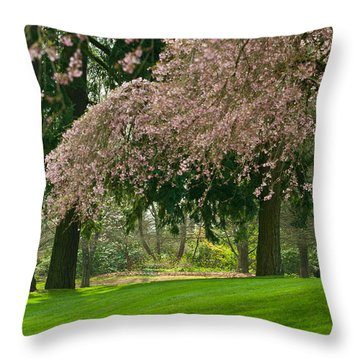 Throw Pillow featuring the photograph Cherry Blossom by Sabine Edrissi