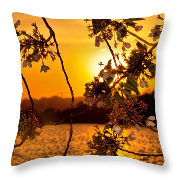 Throw Pillow featuring the photograph Cherry Blossom Sunset by Mitchell R Grosky