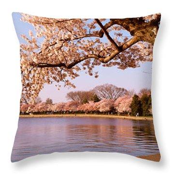 Cherry Blossom Tree Along A Lake Throw Pillow