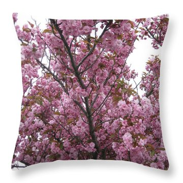 Cherry Blossoms 2 Throw Pillow by David Trotter
