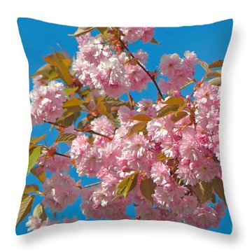 Cherry Blossoms 2 Throw Pillow by Sharon Talson