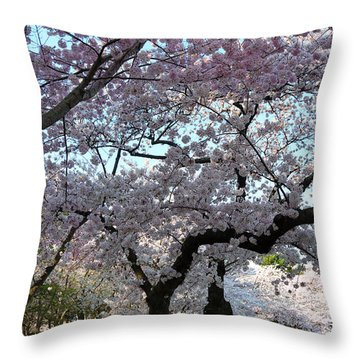 Cherry Blossoms 2013 - 044 Throw Pillow