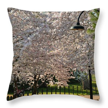 Cherry Blossoms 2013 - 060 Throw Pillow
