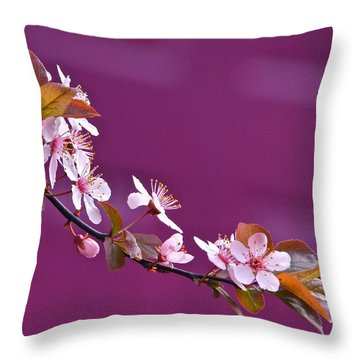 Cherry Blossoms And Plum Door Throw Pillow