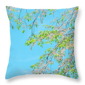 Throw Pillow featuring the photograph Cherry Blossoms Falling by Rachel Mirror