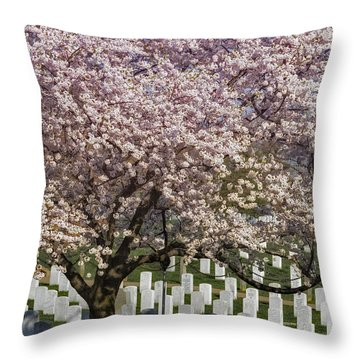 Cherry Blossoms Grace Arlington National Cemetery Throw Pillow by Susan Candelario