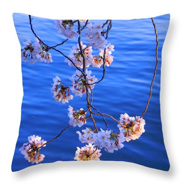 Cherry Blossoms Hanging Over Tidal Basin Throw Pillow