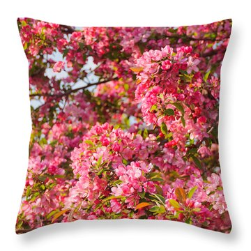 Cherry Blossoms In Washington D.c. Throw Pillow