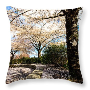 Cherry Blossoms Throw Pillow by Nancy Harrison
