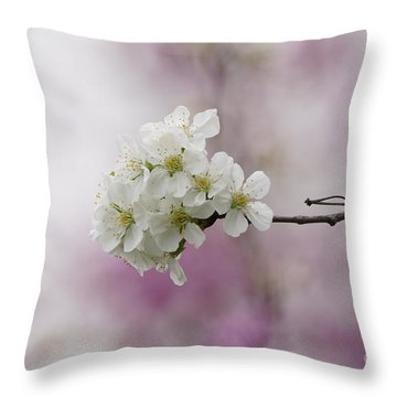 Cherry Blossoms - Out On A Limb Throw Pillow by Robert E Alter Reflections of Infinity