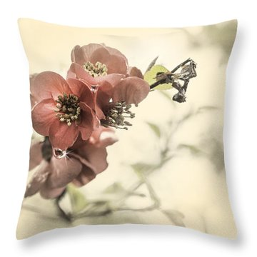 Throw Pillow featuring the photograph Cherry Blossoms by Peter v Quenter