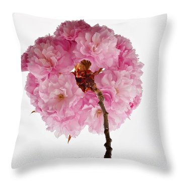Cherry Globe Throw Pillow