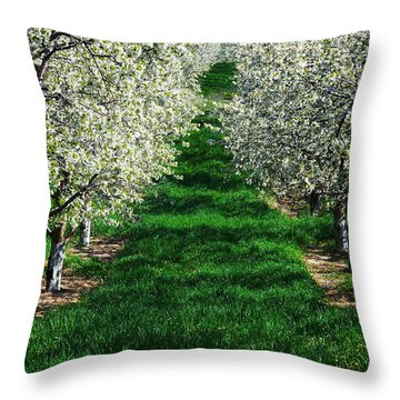 Cherry Orchard Morning Throw Pillow