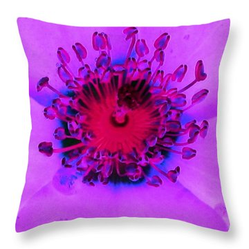 Cherry Pie Rose - Photopower 2827 Throw Pillow by Pamela Critchlow