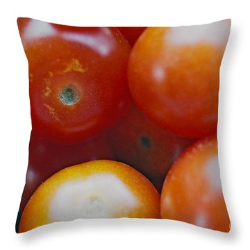 Throw Pillow featuring the photograph Cherry Tomatoes by Cassandra Buckley