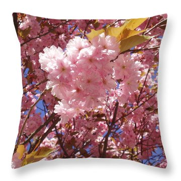 Cherry Trees Blossom Throw Pillow