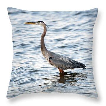 Chesapeake Bay Blue Heron Throw Pillow