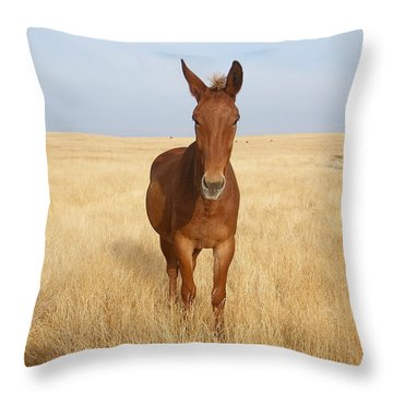 Chestnut Mule In Gold Throw Pillow