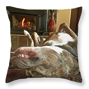 Chestnuts Roasting On An Open Fire  Throw Pillow by Brian Cross