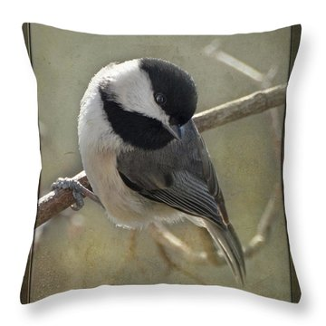 Chickadee Early Bird I Throw Pillow by Debbie Portwood