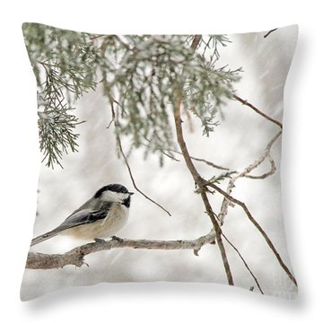 Throw Pillow featuring the photograph Chickadee In Snowstorm by Paula Guttilla