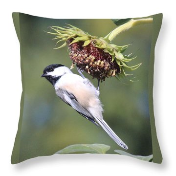 Chickadee On Sunflower Throw Pillow by Lucinda VanVleck