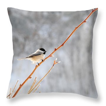 Throw Pillow featuring the photograph Chickadee by Susie Rieple
