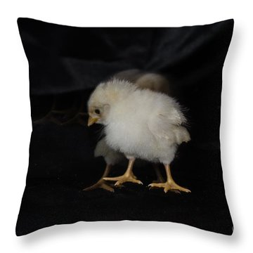 Chicken Dance Throw Pillow by Donna Brown