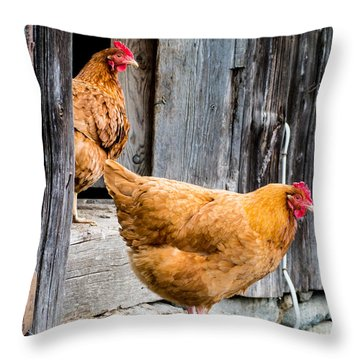 Chickens At The Barn Throw Pillow by Edward Fielding