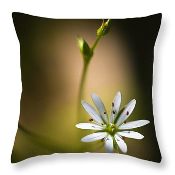 Chickweed Blossom And Bud Throw Pillow by Marty Saccone