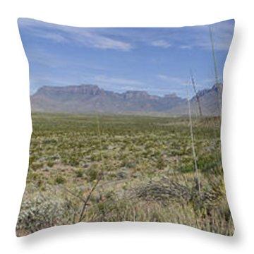 Chihuahuan Desert, Big Bend National Throw Pillow