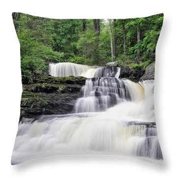 Childs Park Throw Pillow