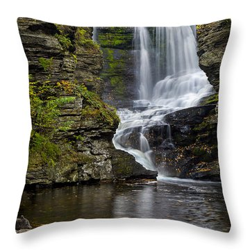 Childs Park Waterfall Throw Pillow by Susan Candelario