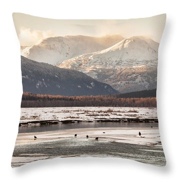 Chilkat Bald Eagle Preserve In Winter Throw Pillow