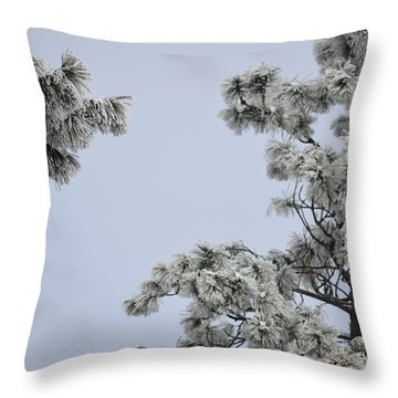 Chill Tree Throw Pillow by Greg Patzer
