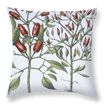 Chilli Pepper Plants Throw Pillow
