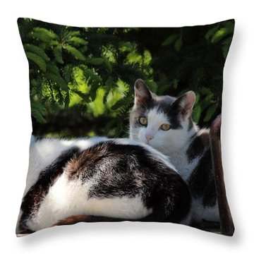 Chillin' Brothers Throw Pillow