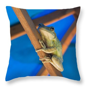 Chillin By The Pool Throw Pillow by Michelle Wiarda