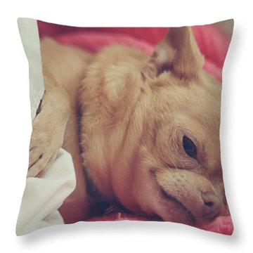 Chillin Throw Pillow by Laurie Search