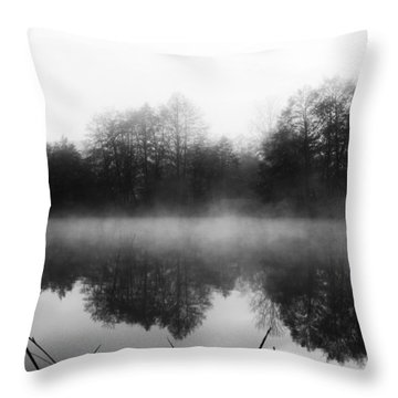 Chilly Morning Reflections Throw Pillow
