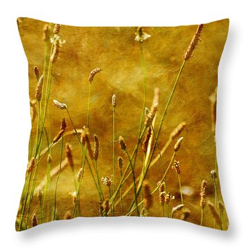 Chimney Sweeps Throw Pillow by Lois Bryan