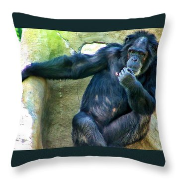 Throw Pillow featuring the photograph Chimp 1 by Dawn Eshelman