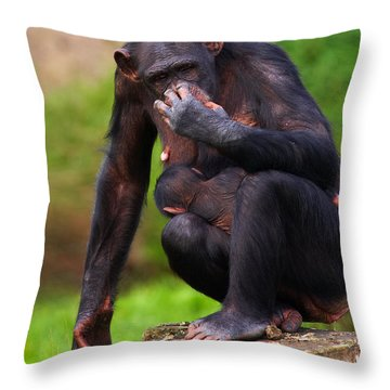 Chimp With A Baby On Her Belly  Throw Pillow by Nick  Biemans